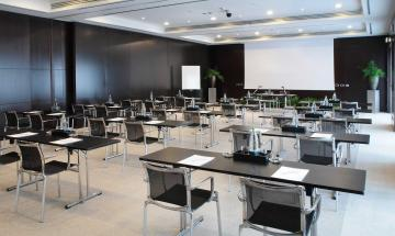 Vega & Pegaso Meeting Room