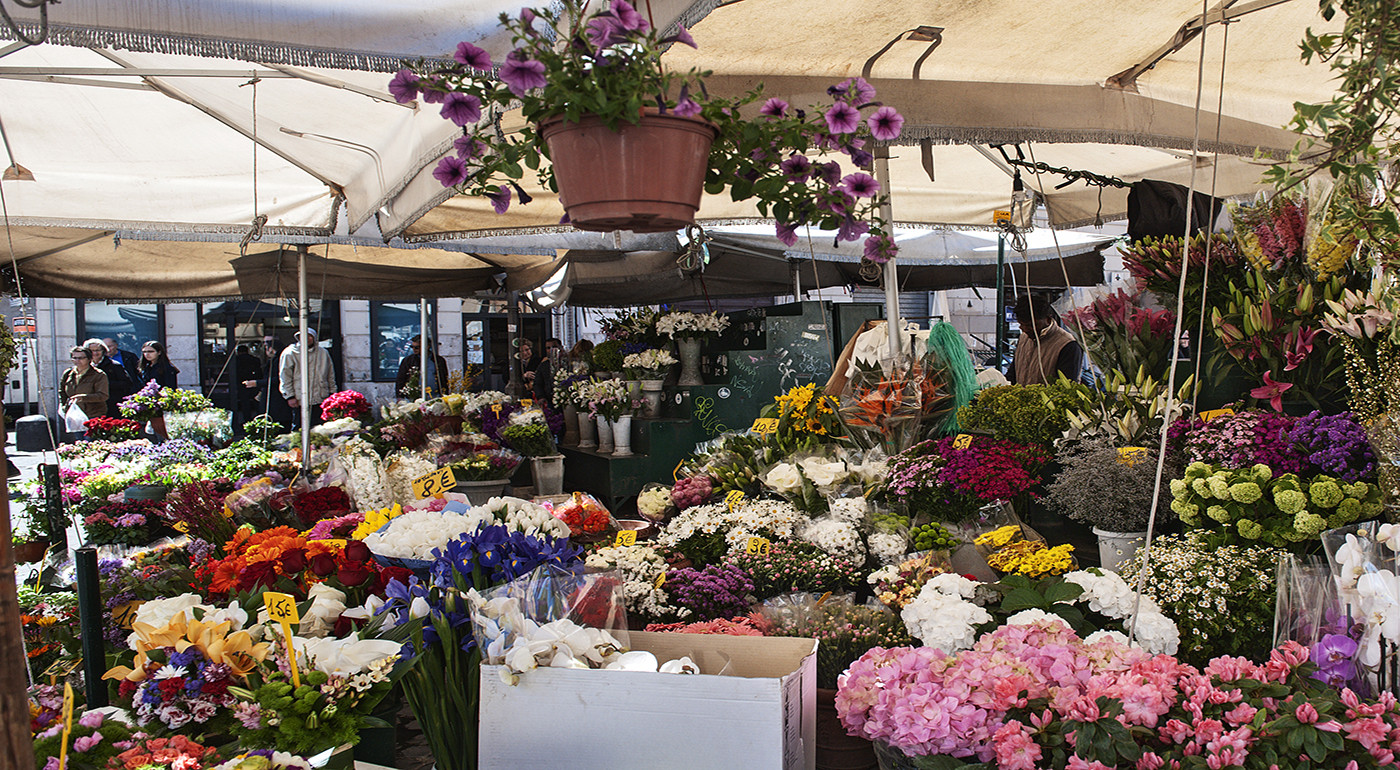 Michelangelo - Destination: Campo de' Fiori - photo 5